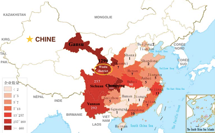 Carte de Chine OLIVES